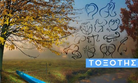 Τοξότης: Πώς θα εξελιχθεί η εβδομάδα σου από 30/09 έως 06/10;