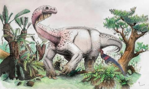 Σπουδαία ανακάλυψη: Ένα νέο είδος δεινόσαυρου ήρθε στο «φως» (pics&vid)