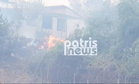 Φωτιά ΤΩΡΑ - Ηλεία: Στις αυλές των σπιτιών οι φλόγες στη Σπιάτζα (pics&vid)