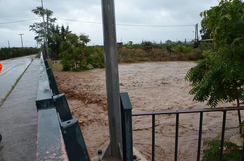 Μεσογειακός κυκλώνας ΤΩΡΑ: Πλημμύρες στο Άργος από την υπερχείλιση του ποταμού Ξεριά (pics)