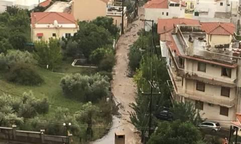 Kυκλώνας Ζορμπάς: Αγωνία για τους τρεις αγνοούμενους στην Εύβοια – Κλειστά σχολεία αύριο (01/10)