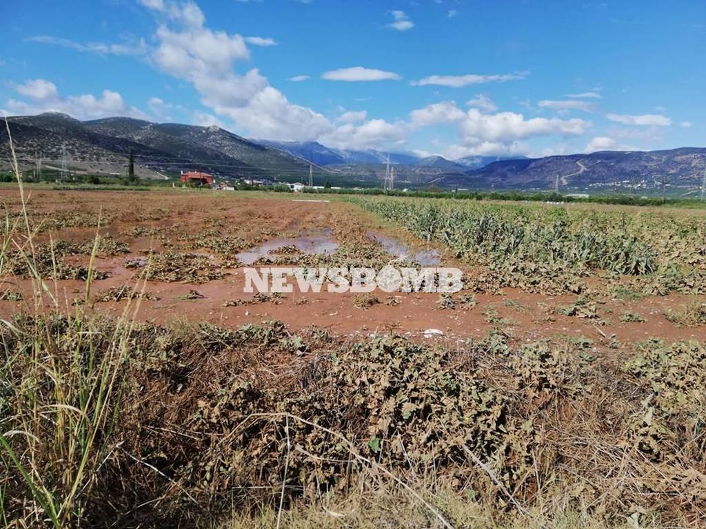Το Newsbomb.gr στις πληγείσες περιοχές: Οδοιπορικό στην Αργολίδα (pics+vids)