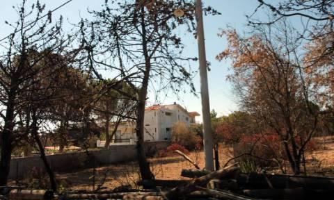 «Καθαρό» πλέον το Μάτι μετά τη φονική πυρκαγιά λέει το Εθνικό Αστεροσκοπείο Αθηνών
