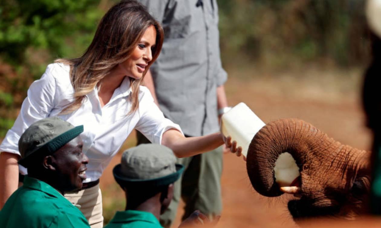 H γνωριμία της Μελάνια Τραμπ με ορφανά... ελεφαντάκια (video)