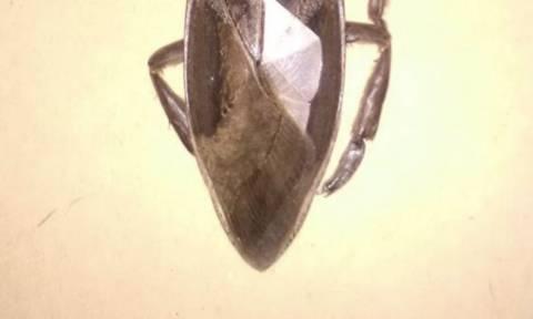 Λαμία: Εντοπίστηκε σαρκοφάγο έντομο γίγας! (photos)