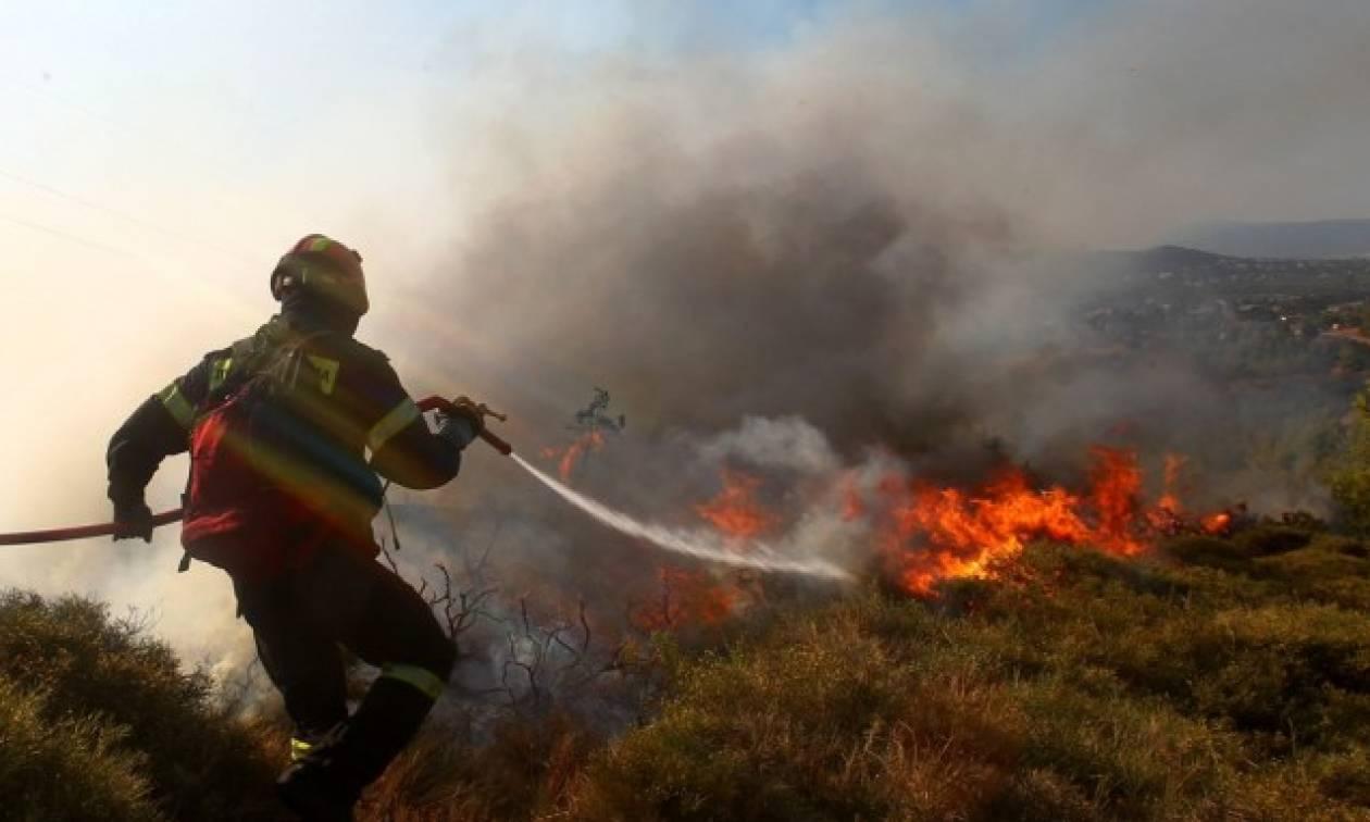 Συναγερμός στην Πυροσβεστική: Μεγάλη πυρκαγιά στην Κέρκυρα - Εκκενώθηκε οικισμός