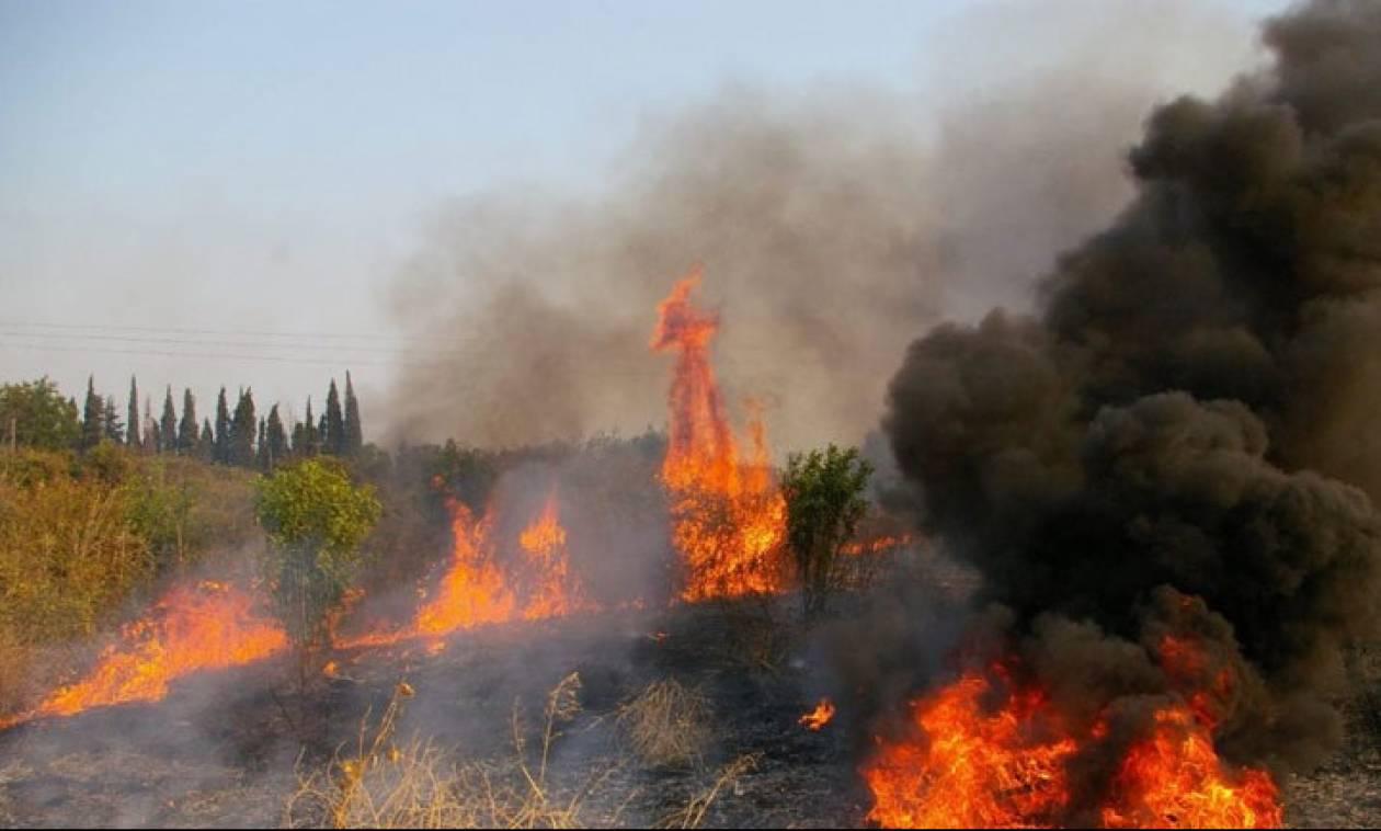 Κέρκυρα: Σε ύφεση η φωτιά στην Κουλούρα - Επιστρέφουν στον οικισμό κάτοικοι και παραθεριστές