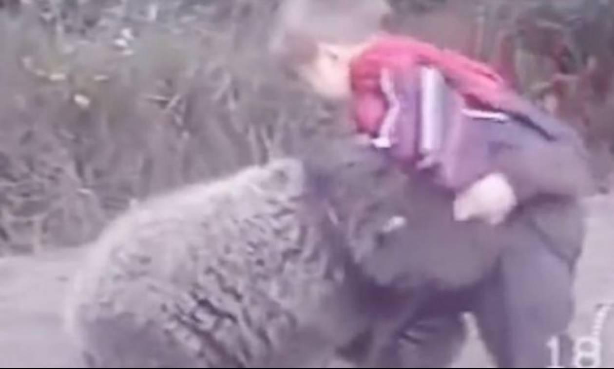 Το απόλυτο θηρίο: Ο 9χρονος Νουρμαγκομέντοφ παλεύει με αρκούδα και την βγάζει νοκ-άουτ!