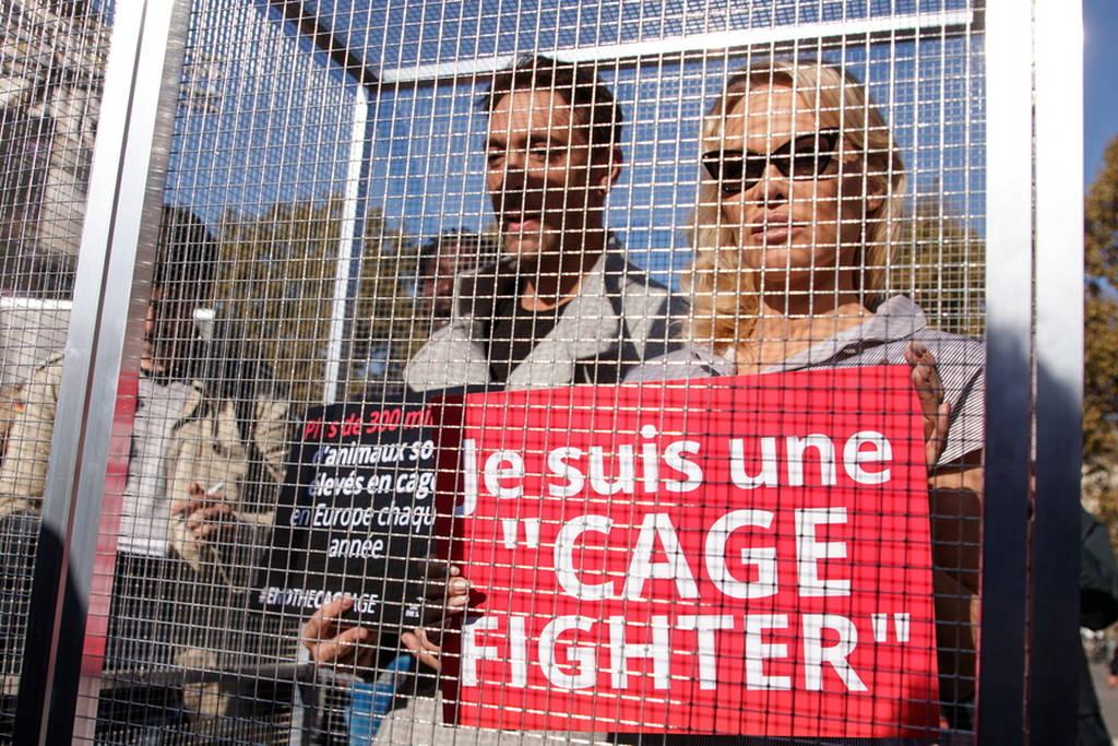 Άστραψαν τα φλας: «Θηρίο»... σε κλουβί η σέξι Πάμελα Άντερσον (Pics+Vid)