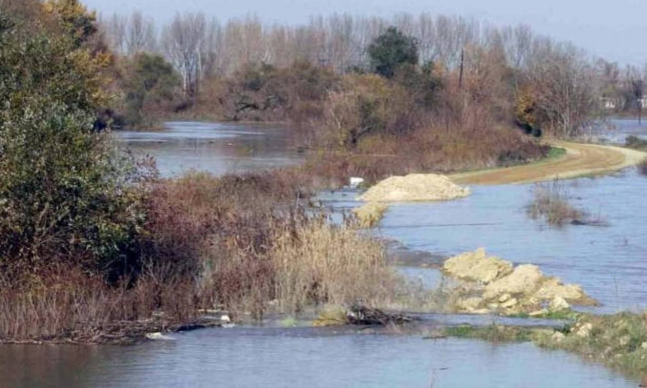 Woman and two teenagers found stabbed in Evros missing IDs, youngest had hands tied