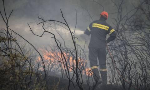Υπό έλεγχο οι φωτιές σε Μουδανιά και Σίνδο