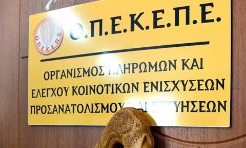 ΟΠΕΚΕΠΕ: Πληρωμές ύψους 8,8 εκατ. ευρώ σε 14.920 δικαιούχους