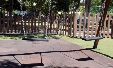 Ιωάννινα: Πανικός σε χωριό – Έπαθαν σοκ με αυτό που είδαν κοντά σε παιδική χαρά (vid)