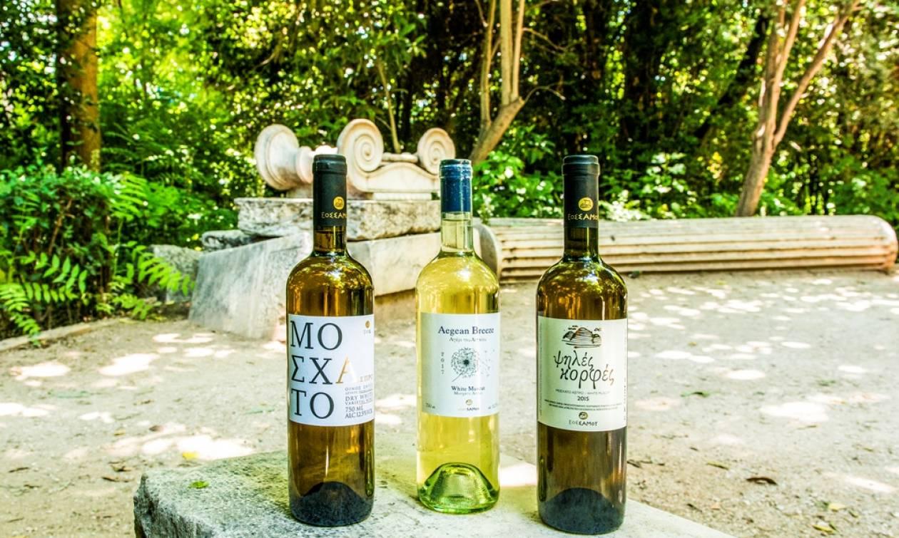 Τα κρασιά του ΕΟΣ Σάμου  Συμμετέχουν στην εκδήλωση  «Τα κρασιά του Αιγαίου στην Αθήνα».
