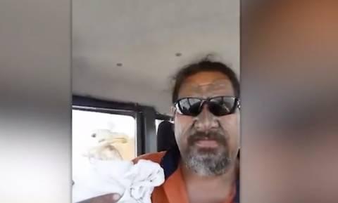 Άνδρας σώζει πληγωμένο γλάρο - Δεν φαντάζεστε τη συνέχεια! (video)
