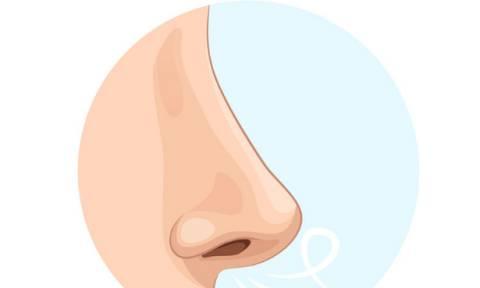 Το σχήμα της μύτης σου αποκαλύπτει στοιχεία του χαρακτήρα σου;