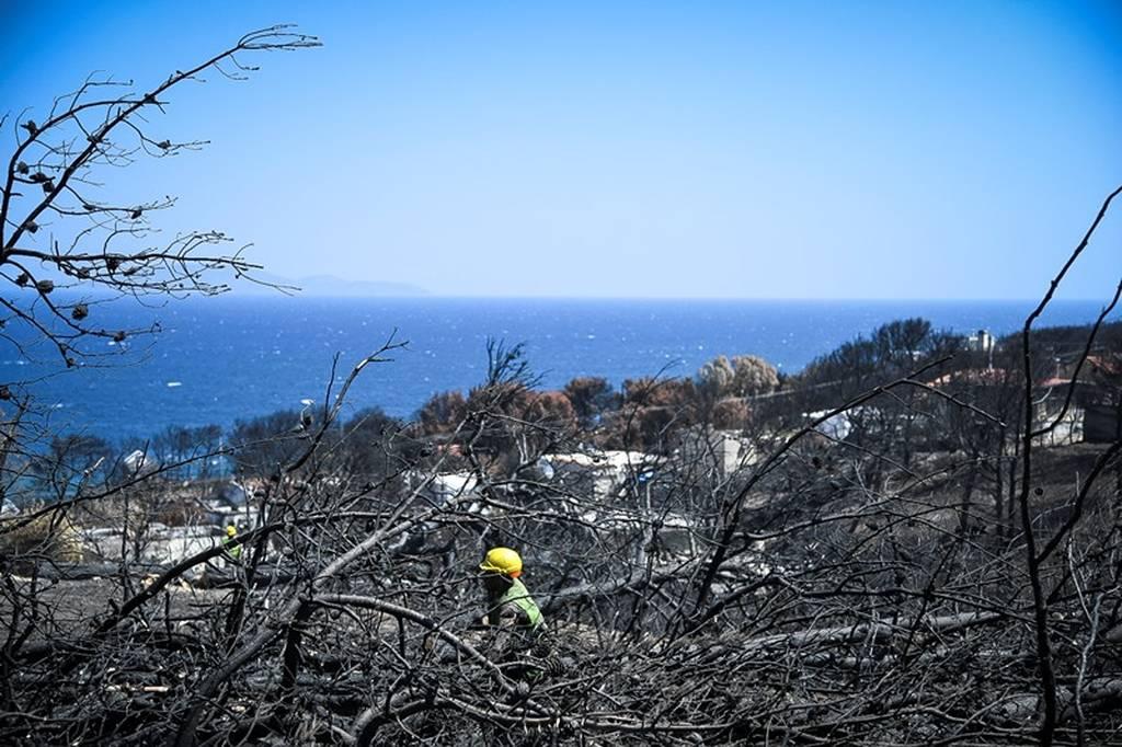 Φωτιά Μάτι: Νέα μήνυση - κόλαφος κατά Δούρου, ΕΛΑΣ και Πυροσβεστική για την εθνική τραγωδία