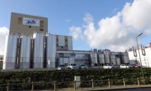 Νέος συναγερμός για 8.000 τόνους σκόνης γάλακτος με πιθανή επιμόλυνση σαλμονέλας