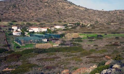 Αναστέλλεται η λειτουργία του Ελληνικού Κέντρου Περίθαλψης Άγριων Ζώων στην Αίγινα (pics)