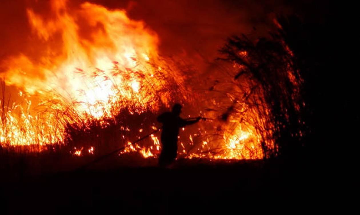 Φωτιά στη Βαμβακιά Σερρών (χάρτης)