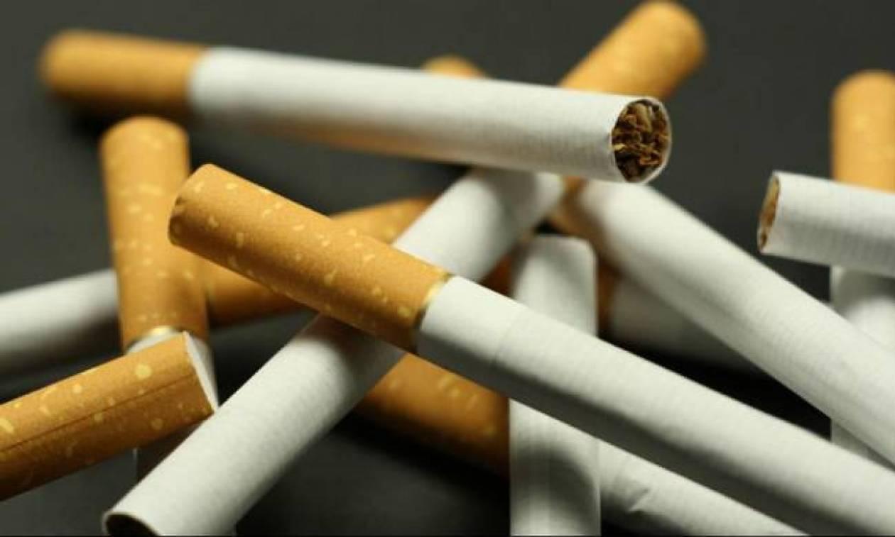 Μέγαρα: Εντοπίστηκε αποθήκη με 320.000 λαθραία πακέτα τσιγάρων (pics)