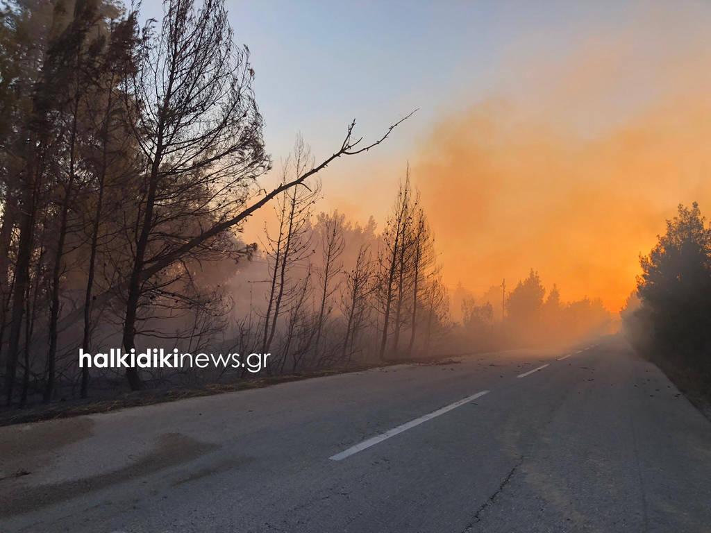 Συναγερμός στη Χαλκιδική: Ανεξέλεγκτη η φωτιά στη Σιθωνία (pics+vids)