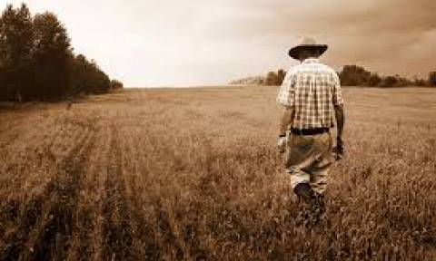 Δεν πίστευε στα μάτια του ο αγρότης με αυτό που αντίκρισε στο περιβόλι του (vid)