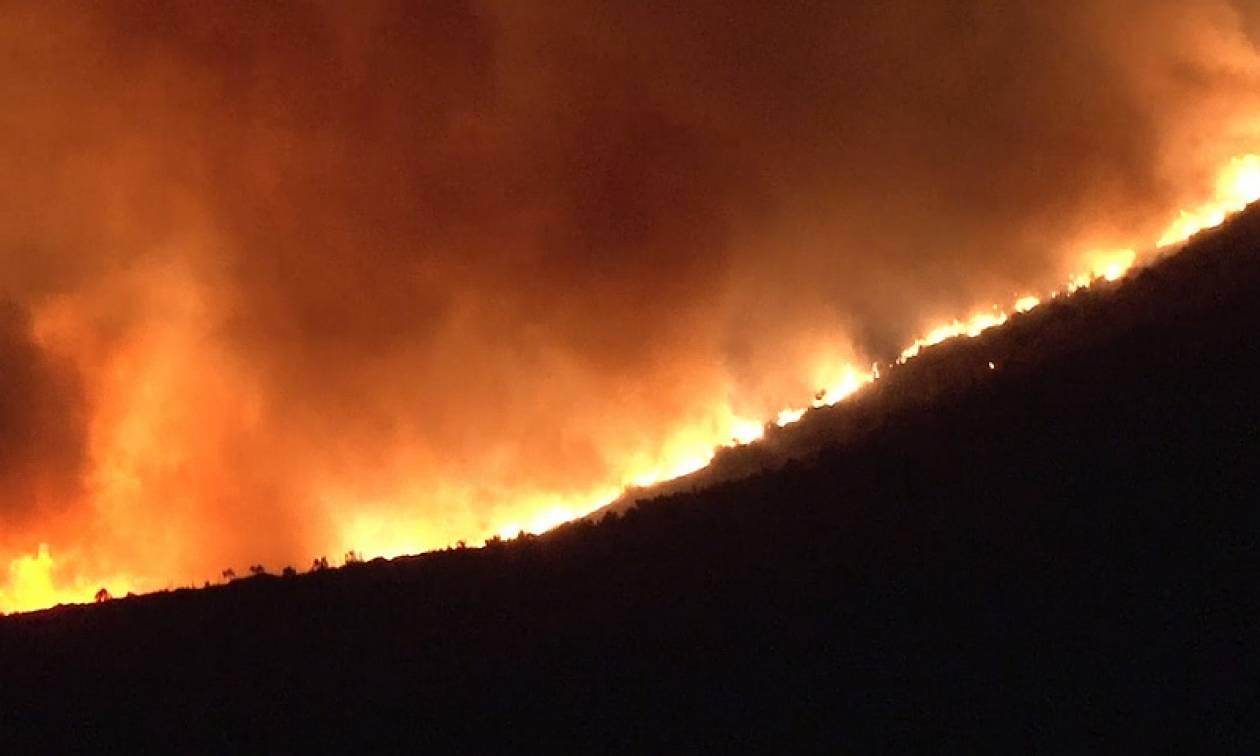 Φωτιά Χαλκιδική: Αυξήθηκαν οι δυνάμεις της Πυροσβεστικής στη Σάρτη