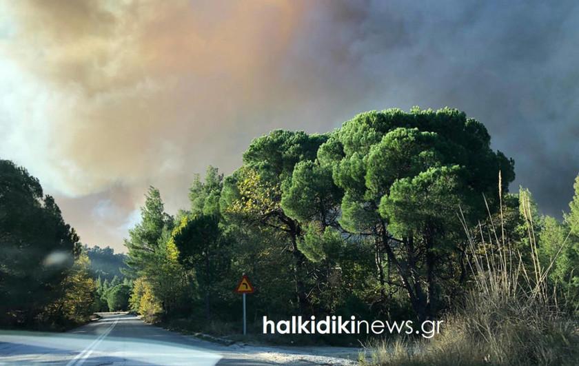 Πύρινος εφιάλτης στη Σιθωνία Χαλκιδικής: Έτοιμοι να εγκαταλείψουν τα σπίτια τους οι κάτοικοι (pics)