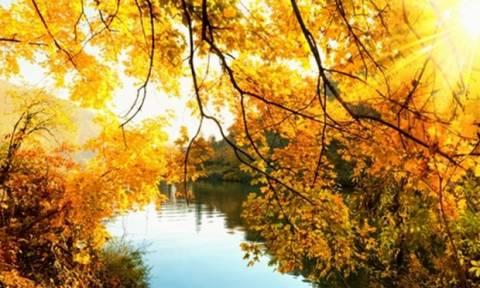 Προβλέψεις Αριθμολογίας για τα Ερωτικά και Οικονομικά του Νοεμβρίου