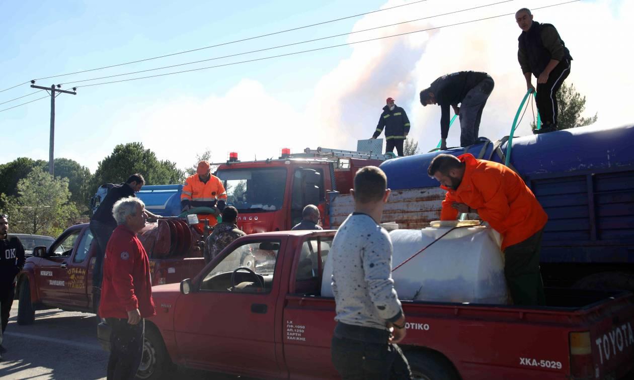 Φωτιά στη Σιθωνία Χαλκιδικής: Υπό έλεγχο η πυρκαγιά