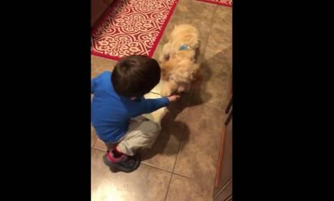 Ο μικρός που μαθαίνει κόλπα στο σκύλο του (vid)
