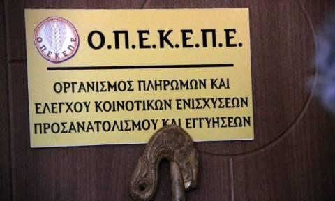 Πληρωμή 3,6 εκατ. ευρώ από τον ΟΠΕΚΕΠΕ για ανειλημμένες υποχρεώσεις