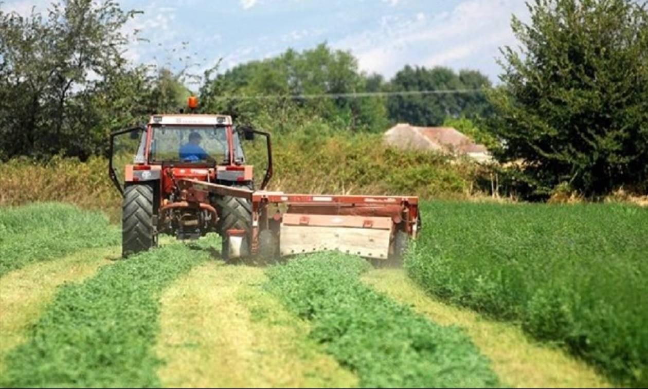 ΕΛΓΑ: Πότε θα πληρωθούν οι εκκαθαρίσεις των αποζημιώσεων σε αγρότες και κτηνοτρόφοι