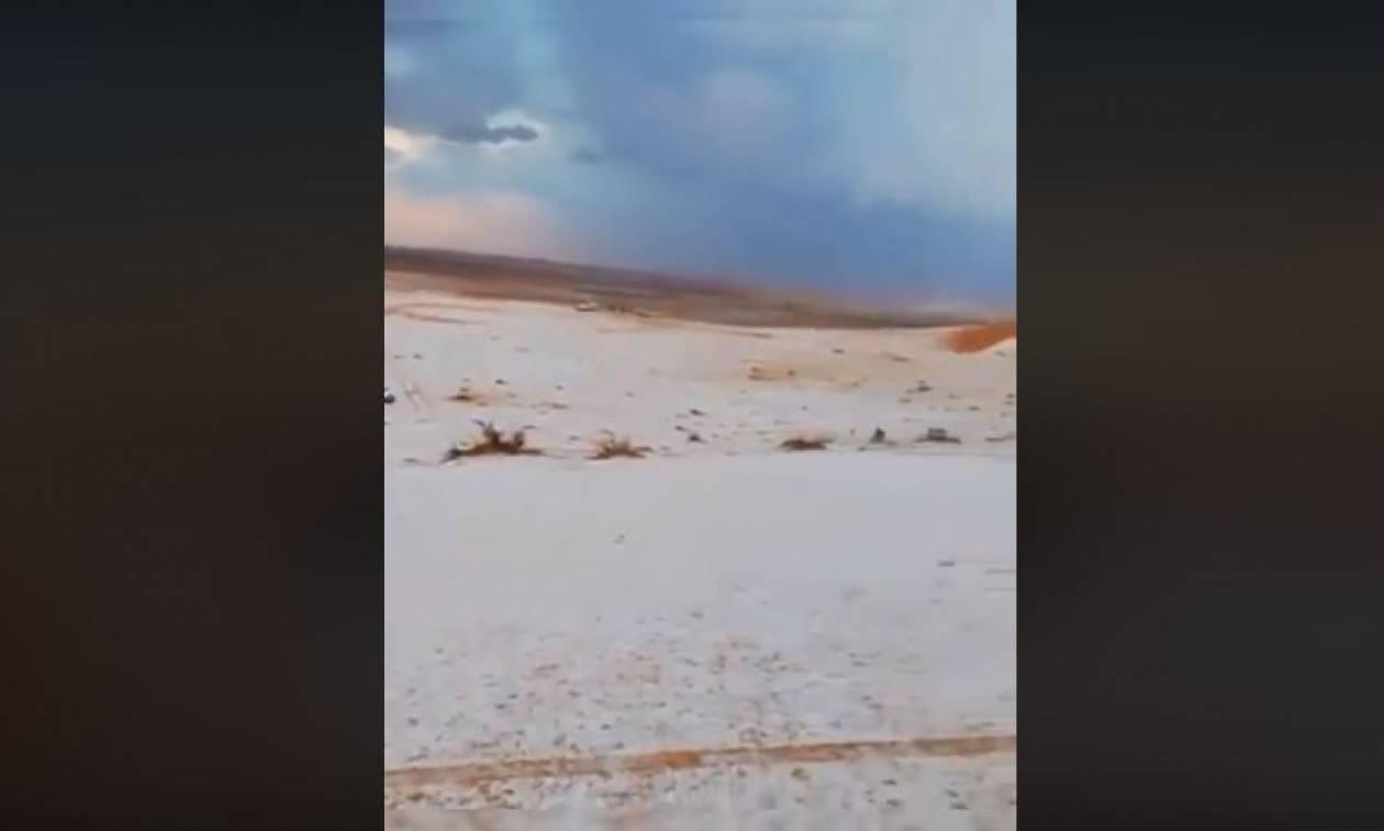 Απίστευτο! Το «έστρωσε» στην καυτή έρημο της Σαουδικής Αραβίας – Δείτε εντυπωσιακές εικόνες