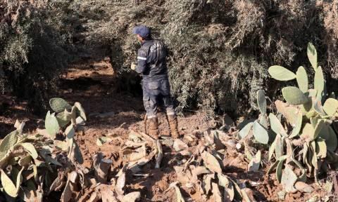 Ιορδανία: Νεκρό βρέθηκε το κοριτσάκι που αγνοείτο από τις πλημμύρες - Στους 13 οι νεκροί (pics+vid)