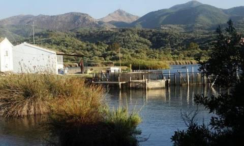 Λιμνοθάλασσα Αντινιώτη: Εντυπωσιάζει η λίμνη των ορχιδέων, των κρίνων και της «βίδρας»