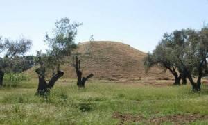 Απίθανη γκάφα on air στην ΕΡΤ: Στη Μάχη του Μαραθώνα οι Αθηναίοι νίκησαν τους… (vid)
