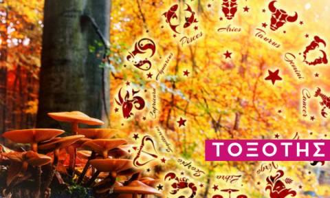 Τοξότης: Πώς θα εξελιχθεί η εβδομάδα σου από 18/11 έως 24/11;