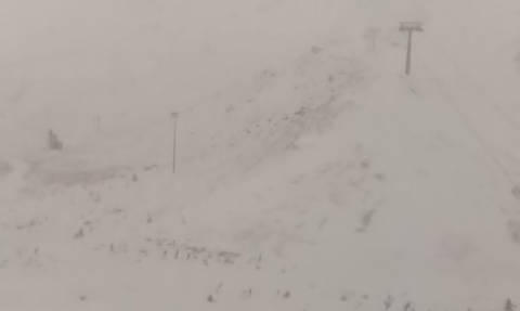 Live Cam: Όλα άσπρα στον Παρνασσό - Γεμίζει χιόνι το χιονοδρομικό κέντρο