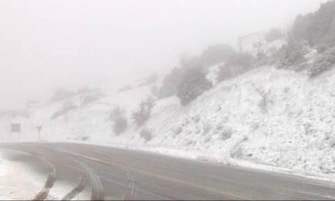 Καιρός: Στα λευκά και ο Ολυμπος, συνεχίζεται η χιονόπτωση (video)