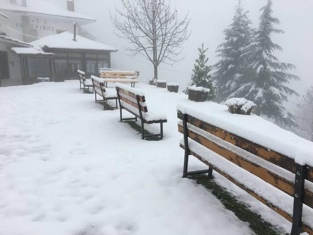 Καιρός: «Βούλιαξε» στο χιόνι η ορεινή Πιερία (pics)