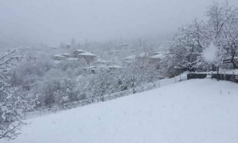 Καιρός: Εγκλωβίστηκαν στα χιόνια 30 άτομα σε χιονοδρομικό στην Πτολεμαΐδα - Δείτε LIVE πού χιονίζει