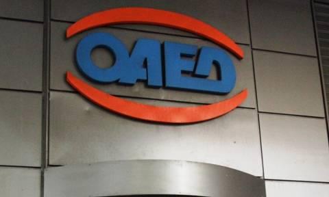 ΟΑΕΔ: «Ανοίγουν» 10.000 νέες θέσεις εργασίας - Δείτε ποιους αφορά