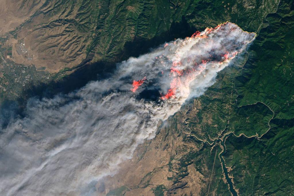 Τους έκανε «έξω φρενών» ο Ζίνκε: Για την φονική πυρκαγιά στην Καλιφορνια φταίνε οι περιβαλλοντολόγοι