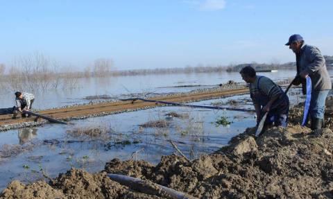 Κίτρινος συναγερμός στους ποταμούς Έβρο και Άρδα λόγω αυξημένων παροχετεύσεων