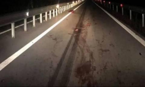 Σκληρές εικόνες από τροχαίο στη Φθιώτιδα: Οδηγός συγκρούστηκε με κοπάδι αγριογούρουνων (pics+vid)