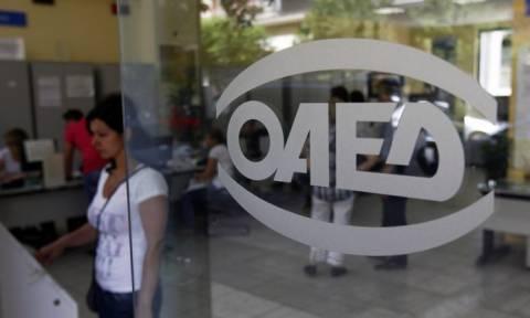 ΟΑΕΔ: Ξεκίνησαν οι αιτήσεις για το πρόγραμμα απασχόλησης 5.500 άνεργων πτυχιούχων