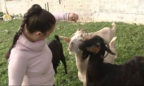 Μητέρα με τη δεκάχρονη κόρη της έφεραν το... χωριό στην πόλη (Video)