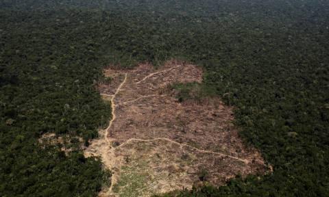 Συναγερμός στον Αμαζόνιο: Εξαφανίζεται δάσος πέντε φορές μεγαλύτερο του Λονδίνου